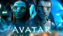 Zoe Saldana a dit au sujet des suites d'Avatar (Cinéma)